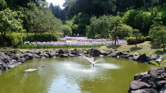 Hitachiota, Japan: 西山荘入り口の無料エリアでは四季の花を楽しめます。
