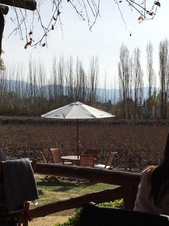 Lujan de Cuyo, Argentina: photo5.jpg
