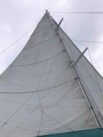 Road Town, Tortola: Sailing