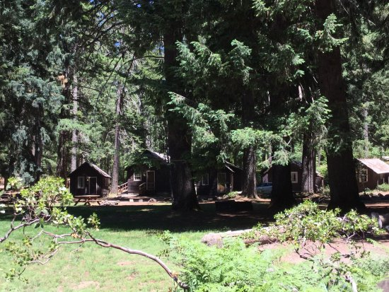 Union Creek Resort: photo4.jpg