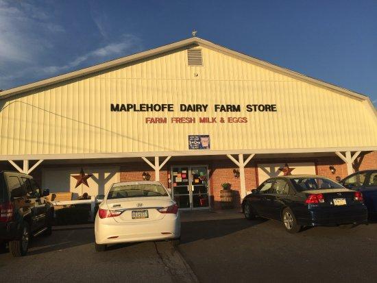 Quarryville, Pensilvania: Maplehofe Dairy