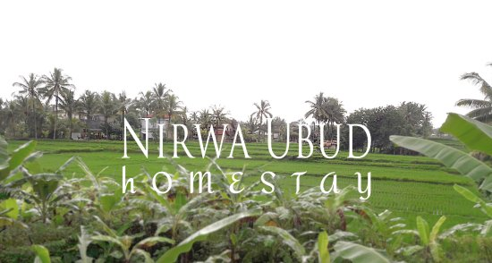 Nirwa Ubud Homestay is Balinese compound with rice paddy around.