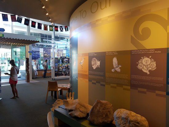 Nelson, New Zealand: We are lucky to have the DoC Visitor Centre in our building.