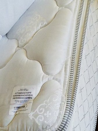 Waterloo, IA : Bed bug evidence.....room 219