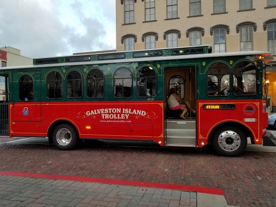 ‪Galveston Island Trolley‬