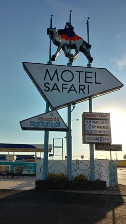 Motel Safari: vintage motel sign