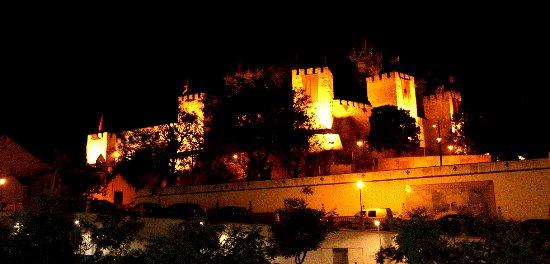 Torres Novas, Portugal: Vista para o Castelo