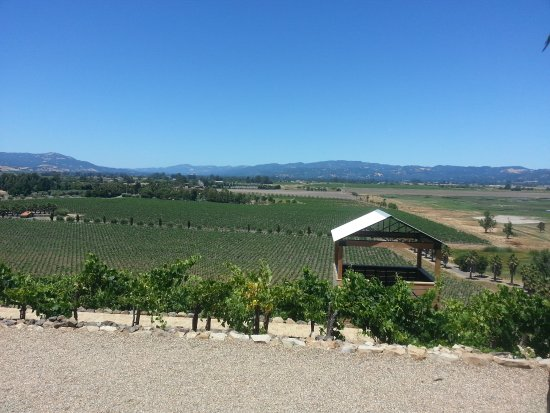 Viansa Winery and Italian Marketplace: View from the main building, picnic shelter in foreground