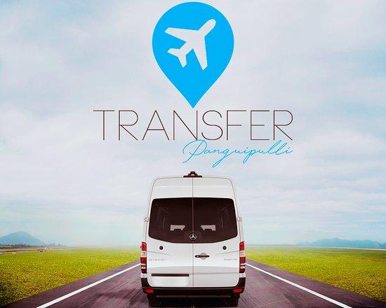 Panguipulli, Chile: Transfer Aeropuerto de la Araucanía - Aeropuerto Pichoy Valdivia - Transfer Huilo Huilo