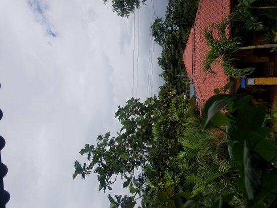Brasilito, Kostaryka: 20170618_095252_large.jpg