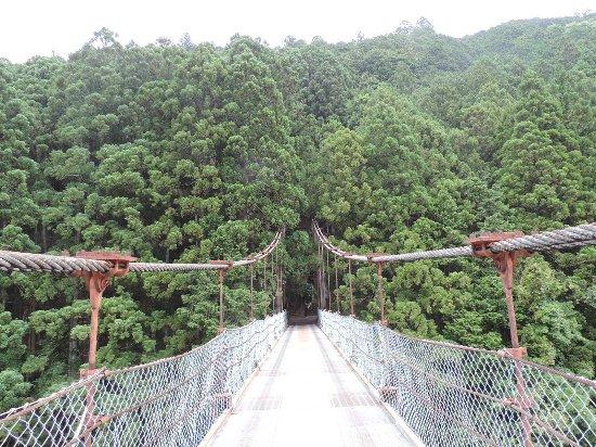 Asahikan: 柏木吊橋
