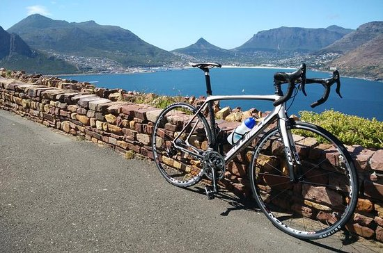 Guided Morning Coastal Cycle Tour in...