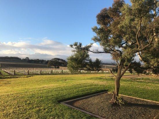 Marananga, Australia: photo4.jpg