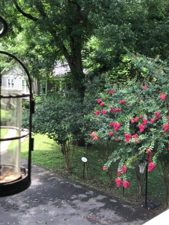 Old Mulberry Inn and Cottages: Crepe myrtle time is approaching!