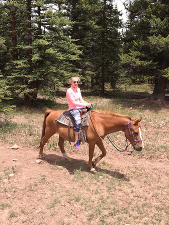Fairplay, CO: 14yr old loving it.
