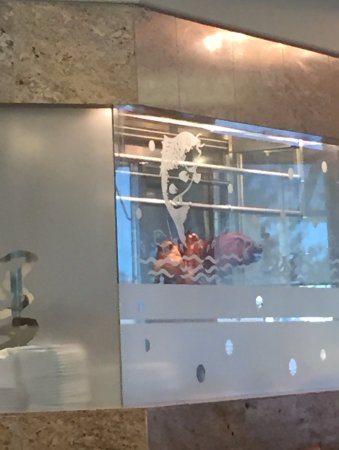 Red Star Seafood Restaurant : duck rotisserie