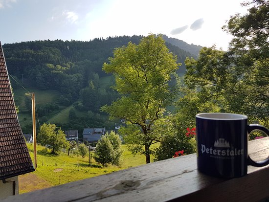 Bad Peterstal-Griesbach, Alemanha: View from one of the balconies