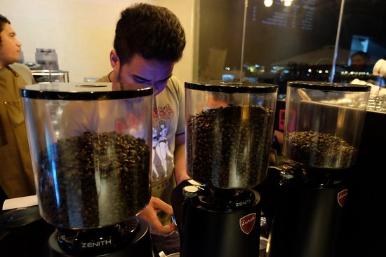 Cordova, Filippine: Coffee beans