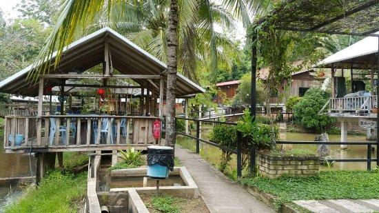 Bentong, Malasia: IMG-20170625-WA0051_large.jpg