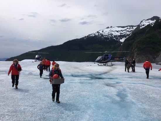 NorthStar Trekking: Zona de aterrizaje