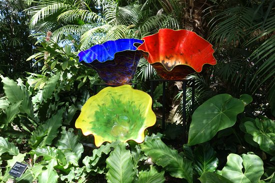 Phipps Conservatory: Besides the plants and flowers, they had glass sculptures by Dale Chihuly and his students.