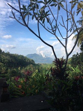 Pondok Batur Indah: photo1.jpg