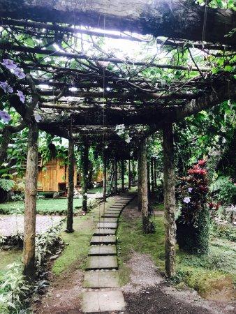 Missing nature? Visit Balay Buhay sa Uma