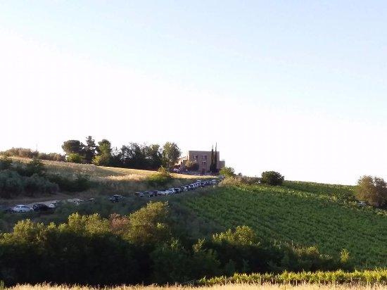 Nocciano, Italia: Panorama