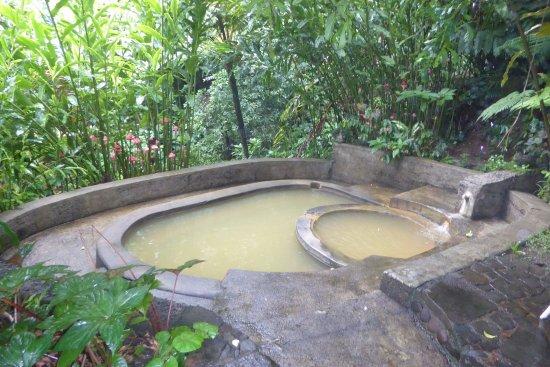 Papillote Tropical Gardens: Sulphar baths