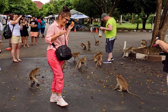 Takua Thung District, Thailand: Как отбиться от голодных обезьян!?
