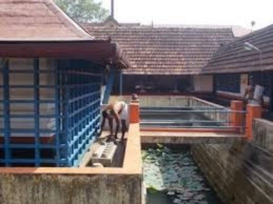 Paravoor, India: pond and way to access well