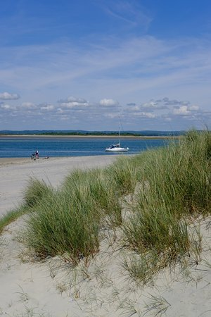 West Wittering, UK: photo8.jpg