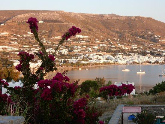 Paros Paradise Apartments : Blick von der Anlage zum Meer (150 m)