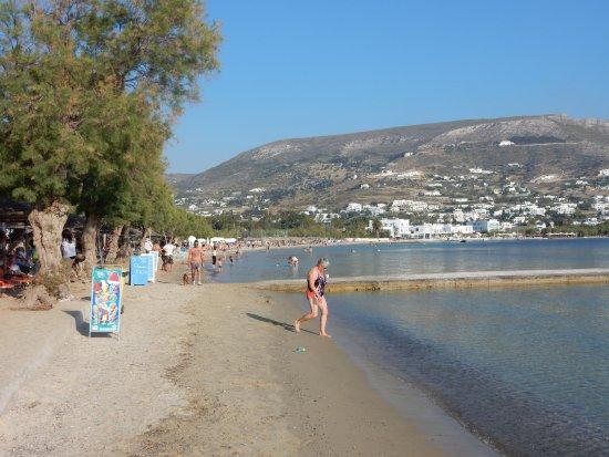 Paros Paradise Apartments : Der wunderschöne Livadia-Beach vom Club Tango Mar aus
