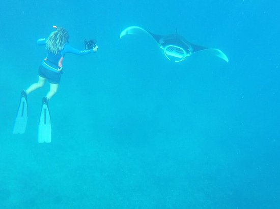 Coral Bay, Australia: photo1.jpg