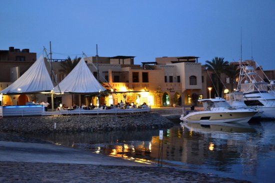 Turtle's Inn: Abu Tig Marina restaurants