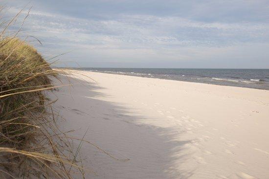 Loderup, Svezia: Sandhammarens Strand Juni 2017