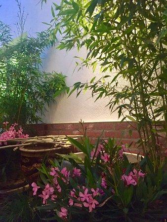 Thai Garten Picture Of Gindee Yoodee Wiesbaden Tripadvisor