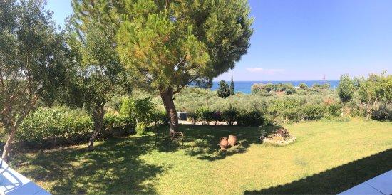 Ammoudi, Greece: Julia Studios