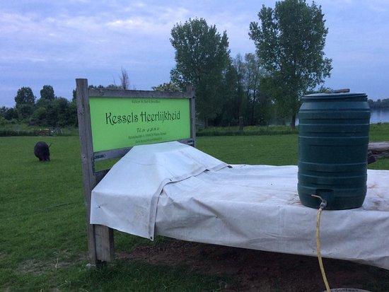 Maren-Kessel, Hà Lan: Bed op het weiland