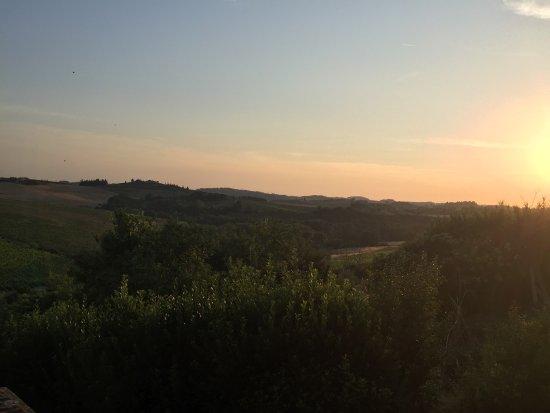 Montagnana Val di Pesa, İtalya: Agriturismo Podere Torricella - Fattoria il Turco
