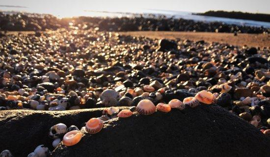 Bargara, Αυστραλία: photo1.jpg