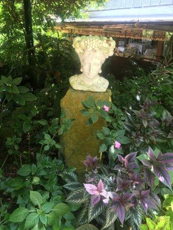 Sonya's Secret Garden: photo9.jpg