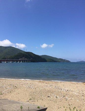 Oi-cho 사진
