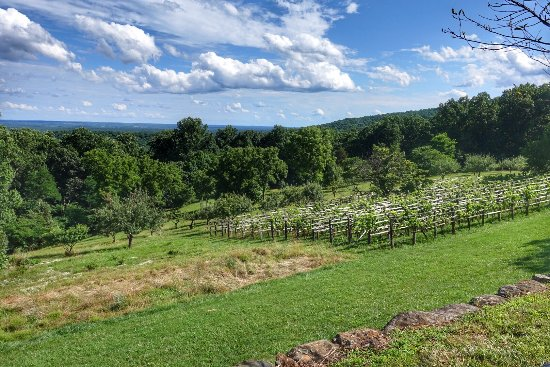 Charlottesville, VA: The view from Monticello