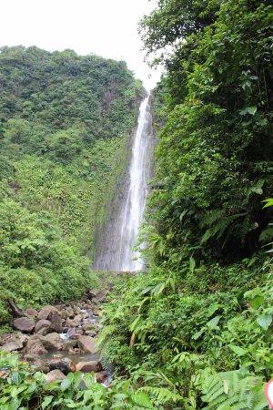 Basse-Terre, Guadeloupe: 2nde chute du carbet, 110m de haut accessible par tous