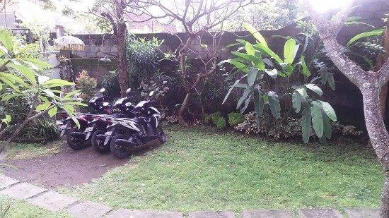 Padangbai Picture