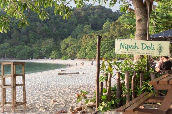 Pulau Pangkor, มาเลเซีย: directly on coral beach