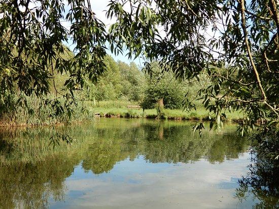 Caldy Nature Park