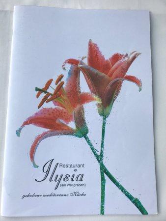Ilysia am Wallgraben: photo6.jpg